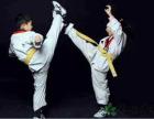 通州区武夷花园儿童跆拳道班正在招生