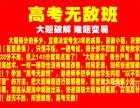 深圳龙华专业初高中数学家教