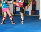 散打拳击 武术搏击 咏春拳 新街口原本馆免费试上