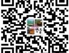 兴安二手发电机出租/转让/高价回收可上门-24小时租赁