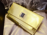新款潮女蛇纹手拿包金色晚宴包女夹包单肩斜跨链条小包转锁手抓包