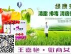 绿康莱国际七莓酵素 美容瘦身养生首选