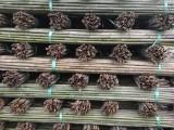湖北竹竿批发2-3米菜架竹竿4米5米6米7米野生山竹竿批发
