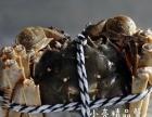 固城湖精品大闸蟹