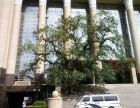 天津 非法组织卖血罪辩护律师