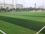 广东深圳人造草坪足球场工程铺设造价 人造草坪施工方案