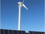 電控型風力發電機 低速永磁風力發電機