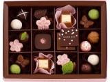 大包装巧克力进口清关卫生证样本