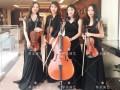 武汉婚礼提琴迎宾