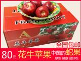 """甘肃天水""""花牛""""苹果栽培区新鲜采摘苹果1"""