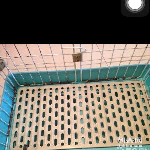 低价出售结实笼子 适合各种宠物