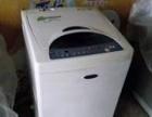 超低价转让一台5.5公斤全自动小天鹅洗衣机