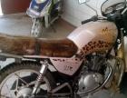 钻豹摩托出售 进口发动机
