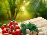 菌棒夏菇价格行情 网库交口菌棒夏菇的批发价格