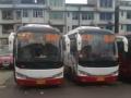 广西柳州三江县30座大金龙旅游客车包车