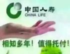 中国人寿上蔡寿险,车险