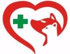 深圳龙华新区龙华中心区晚上24小时宠物医院出诊服务