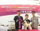 5.5CKU上海美容师资格认证考试汇报