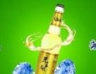海态啤酒招商加盟 品种丰富 政策好 支持力度大