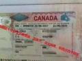 加拿大大龄留学签证拒签再签