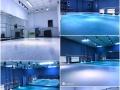 北京BFOUR舞蹈工作室韩舞爵士舞培训暑期班较后一期