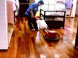 保税区木地板翻新、木地板打蜡,石材地板翻新保养服务