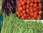 蔬菜水果肉类冷冻食品配送