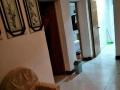 颍州 颍州区文峰街 2室 1厅 75平米