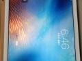 iPad-air2 16gwifi+4g版