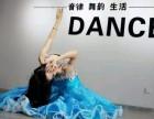 减肥健身舞蹈西安肚皮舞嘉艺舞蹈全国连锁