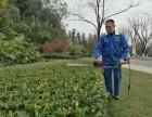 承接成都企业门脸厂区绿化绿值草坪养护服务