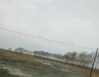 龙江 龙江县广后乡下富景公路旁 土地 7000平米