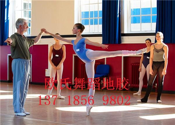 舞蹈室pvc地胶厂家 羽毛球场地塑胶地板