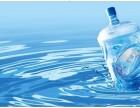 株洲市桶装水天元区配送