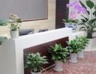 厦门专业园林绿化、厦门花卉租赁、开业花篮、绿化养护