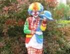 五六七八九公里、李家沱、鱼洞宝宝宴小丑派送氢气球