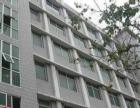 湖滨南路多荣公寓单身公寓出租 禾祥西百脑汇中山医院附近