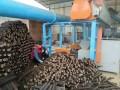 木炭机设备 长沙木炭机直销 全自动环保制炭机 木炭机加工技术