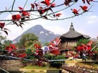 泉州石狮晋江到日本大阪东京温泉七日游