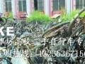 潍坊高校二手自行车专卖
