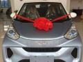 奇瑞小蚂蚁新能源电动汽车