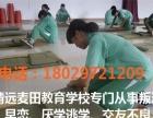 叛逆小孩教育学校广东清远麦田教育
