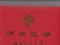 乐山2017年秋季西南科技大学 四川农业大学报名开始了
