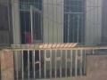 江南法政路一楼 仓库 130平米