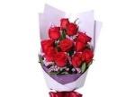 郑州鲜花预定网上鲜花订购快速送到地方金水区免费送货