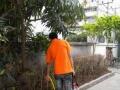 湛江勤洁杀虫服务专业杀蟑螂、灭鼠、灭四害、上门服务