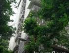 两路口 王家坡新村 2室 1厅 65平米 整租