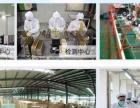 佳洁加盟代理净水器纯水机厨房电器 朝阳企业利润高