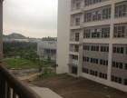 独栋14000方生产研发综合楼,除污染 噪音外其他行业都行