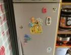 Bcd-186无氟美菱冰箱